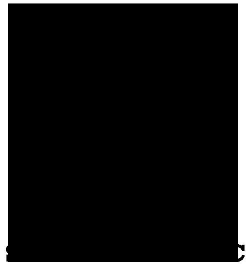 Logo Mallplaza